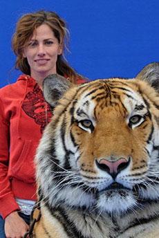 Hollywood Animal Trainers Movie Animal Actors Tv